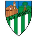 escudo neguri